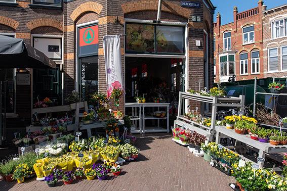 Bloemist de Lange Leiden